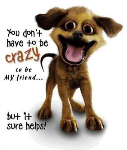 friends_crazy_dogs