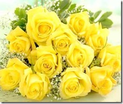 image-of-yellow-roses